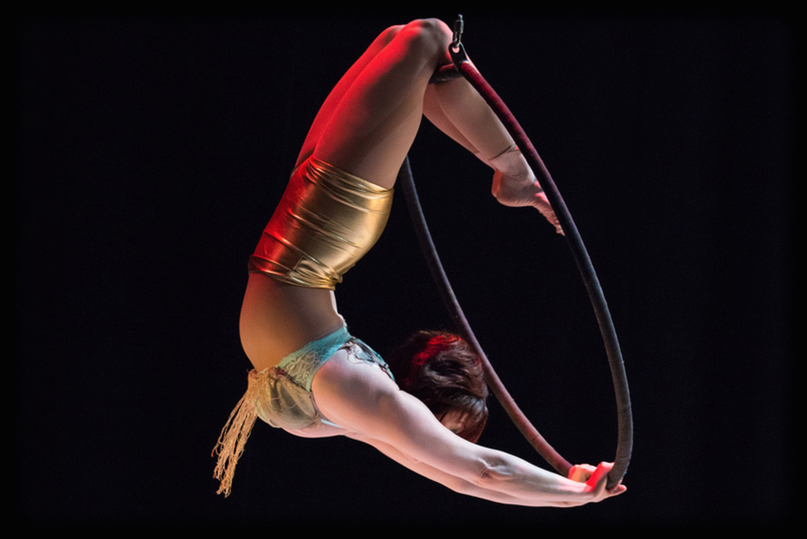 Definition of Acrobat at